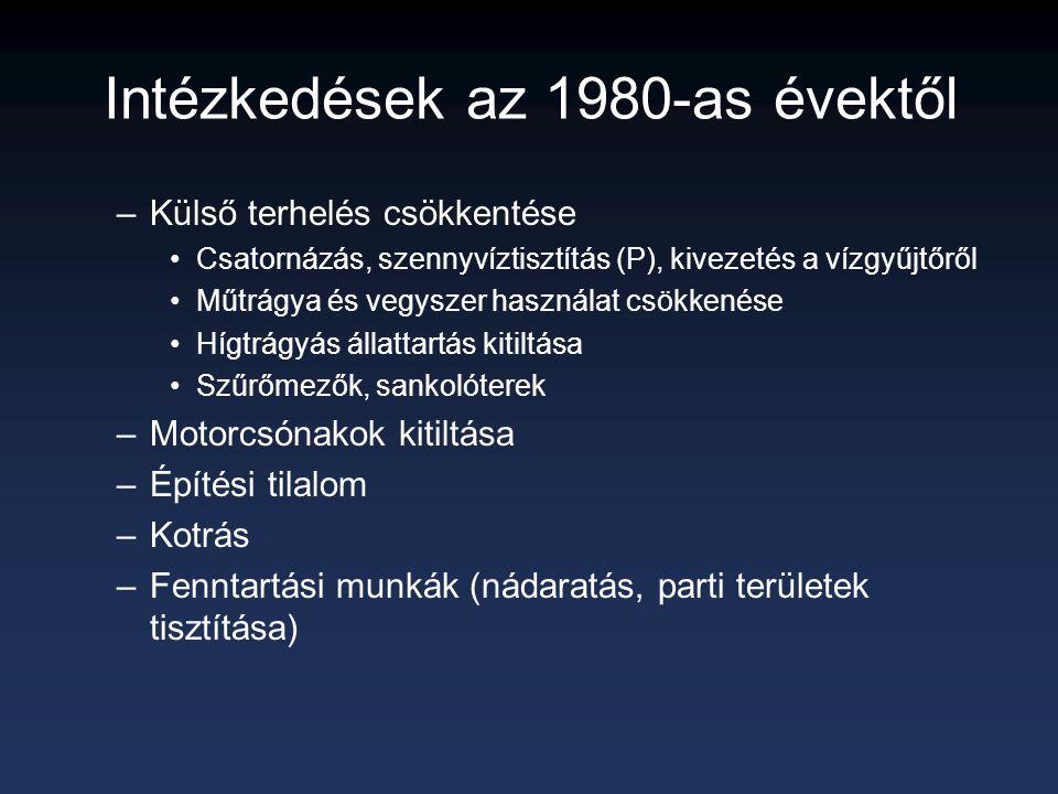 Intézkedések az 1980-as évektől
