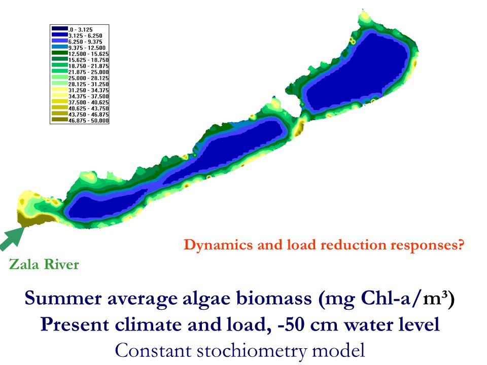 Summer average algae biomass (mg Chl-a/m³)