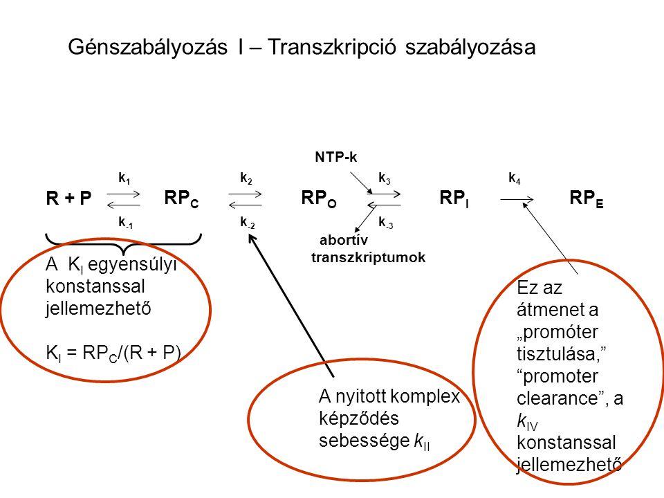 Génszabályozás I – Transzkripció szabályozása