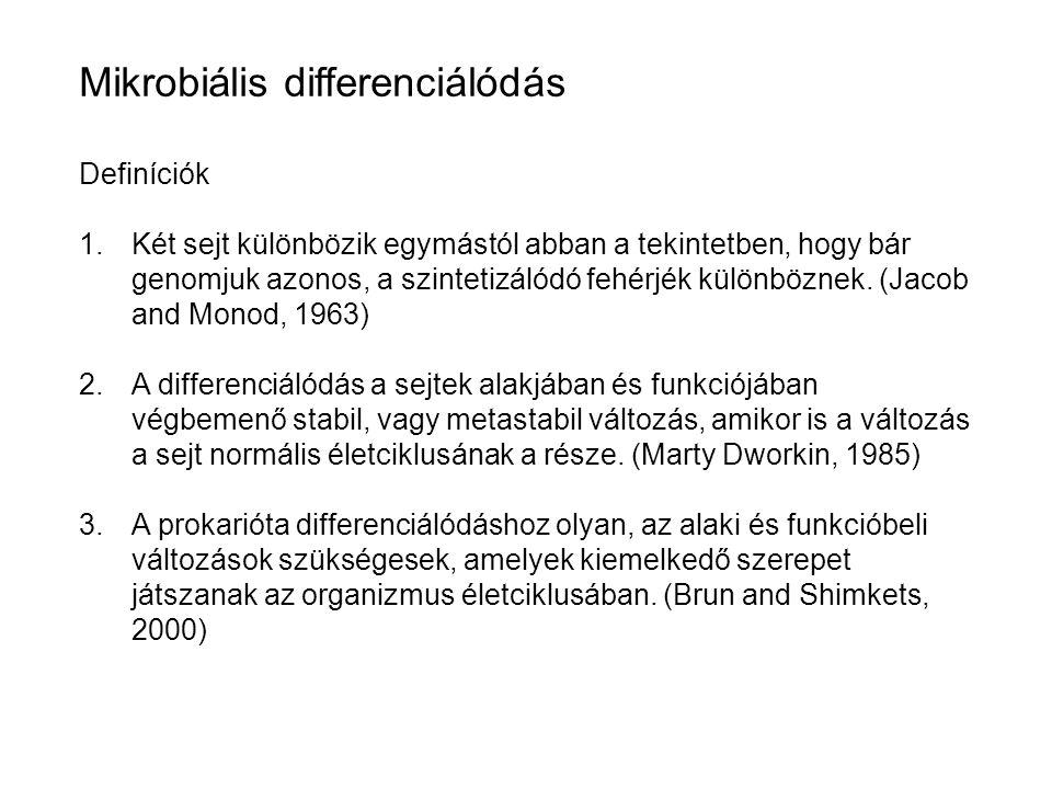 Mikrobiális differenciálódás