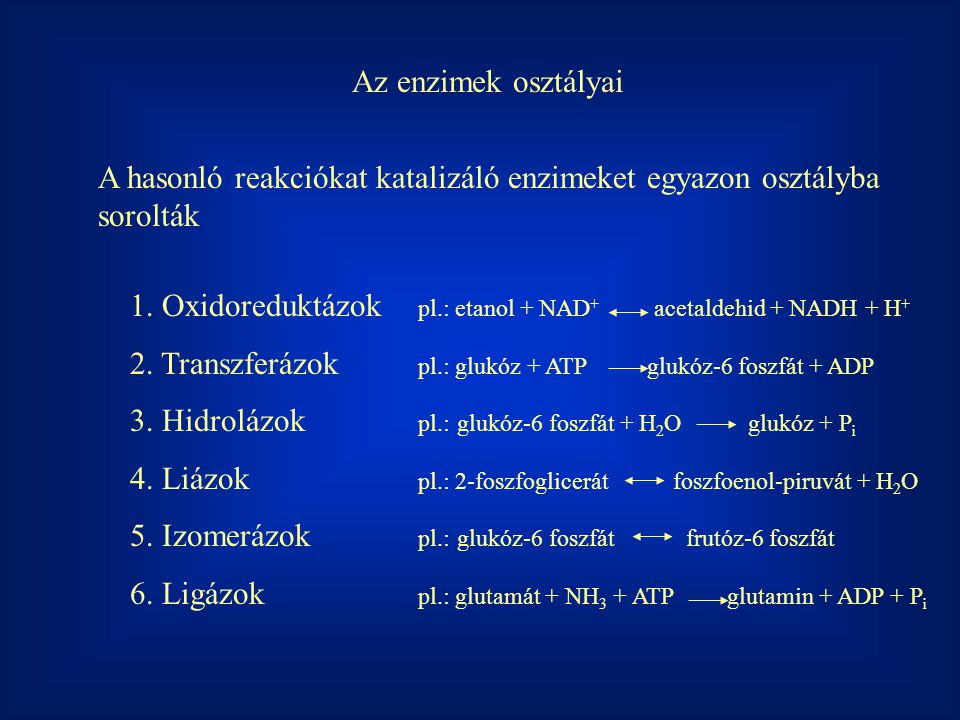 Az enzimek osztályai A hasonló reakciókat katalizáló enzimeket egyazon osztályba sorolták.