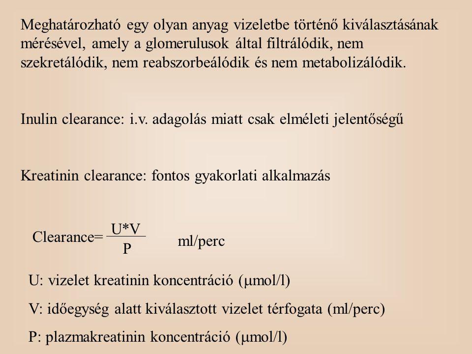 Meghatározható egy olyan anyag vizeletbe történő kiválasztásának mérésével, amely a glomerulusok által filtrálódik, nem szekretálódik, nem reabszorbeálódik és nem metabolizálódik.