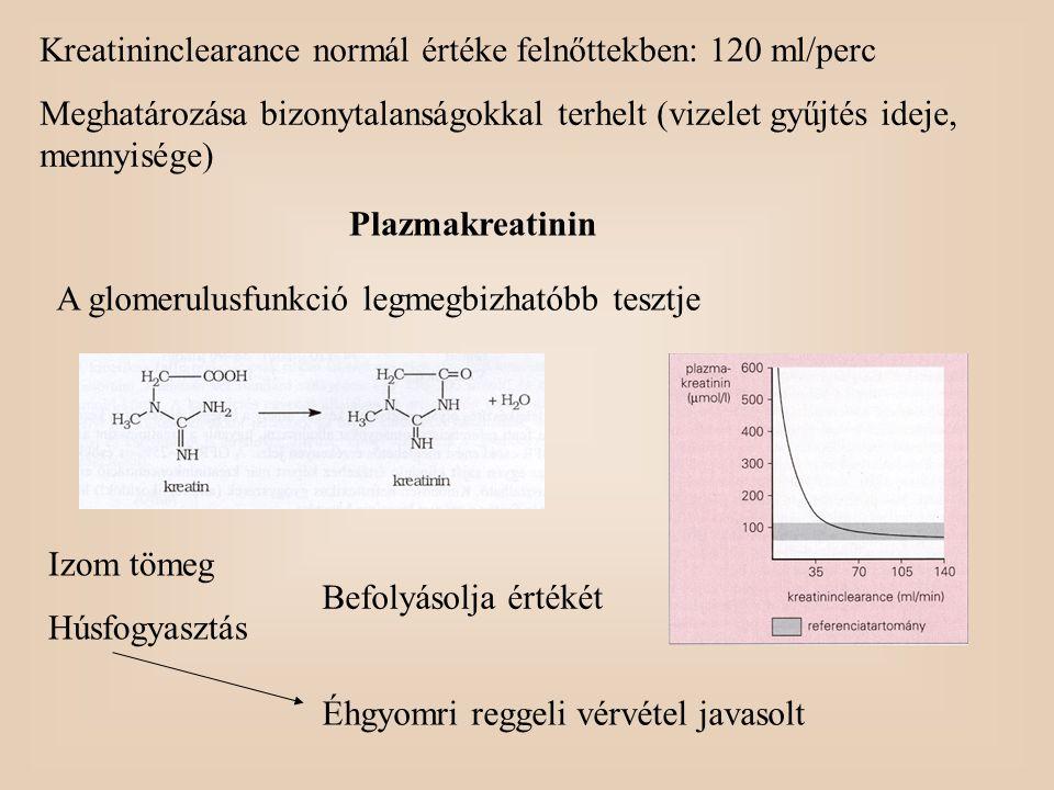 Kreatininclearance normál értéke felnőttekben: 120 ml/perc