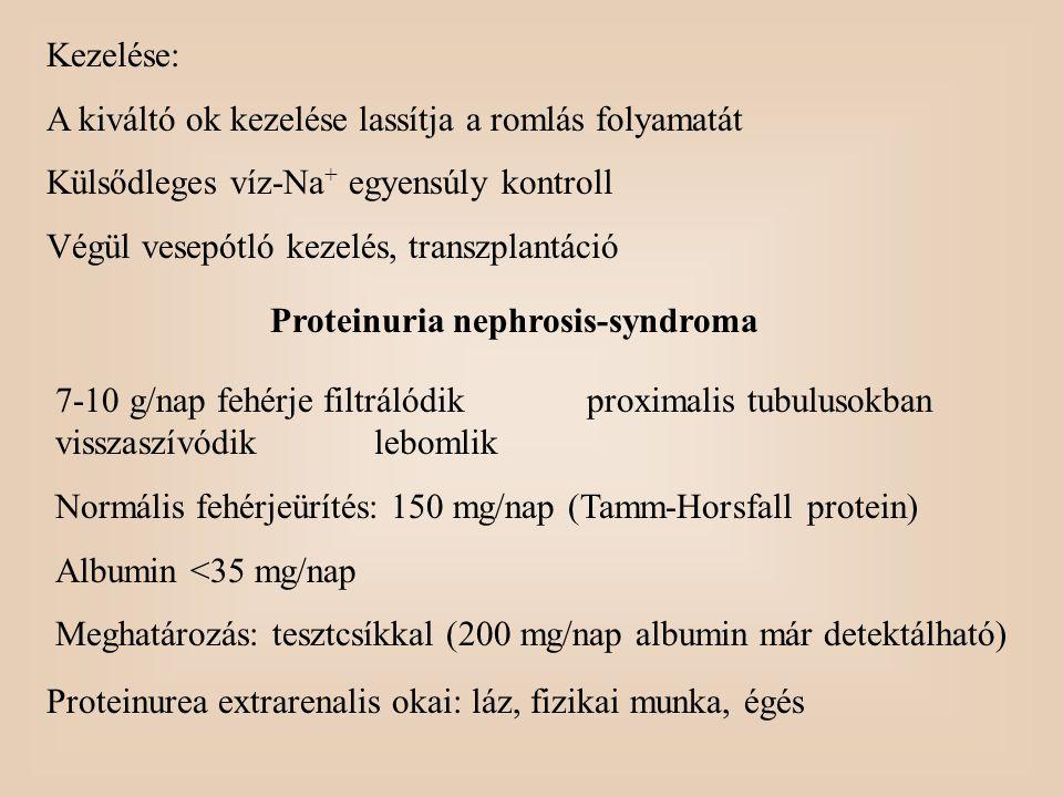 Proteinuria nephrosis-syndroma