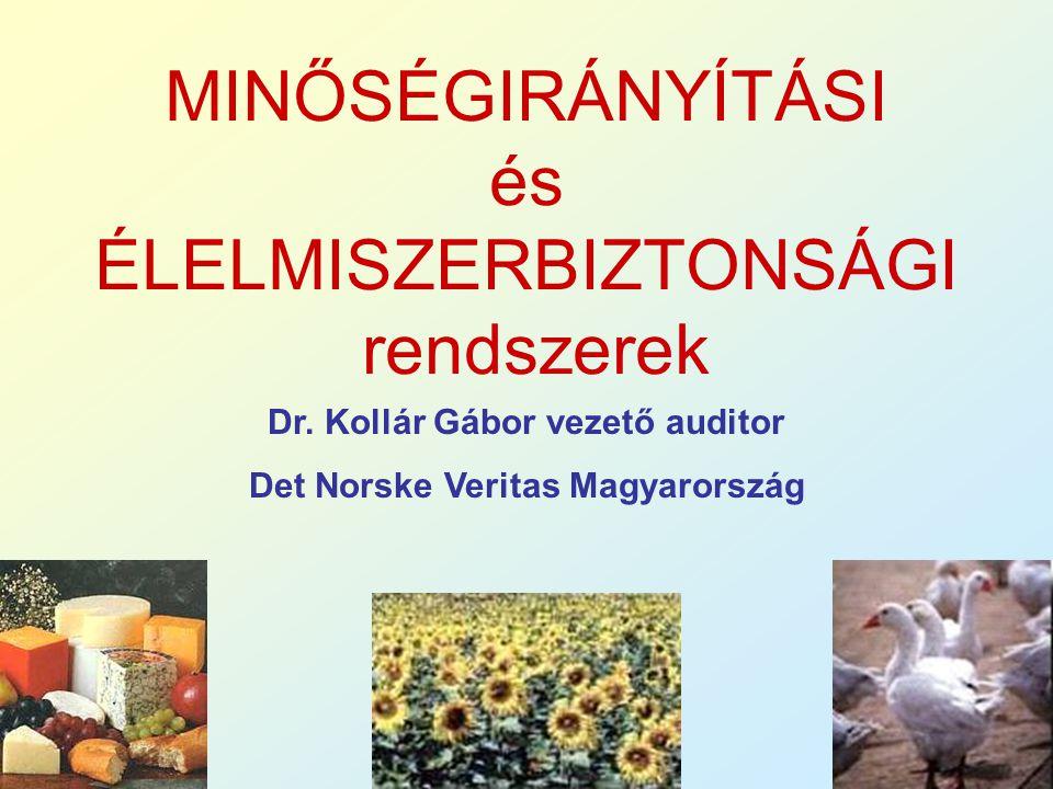 Dr. Kollár Gábor vezető auditor Det Norske Veritas Magyarország