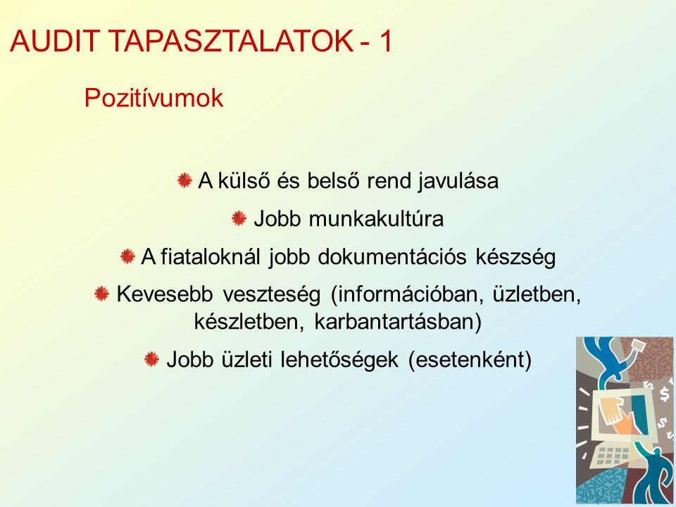 AUDIT TAPASZTALATOK - 1 Pozitívumok A külső és belső rend javulása