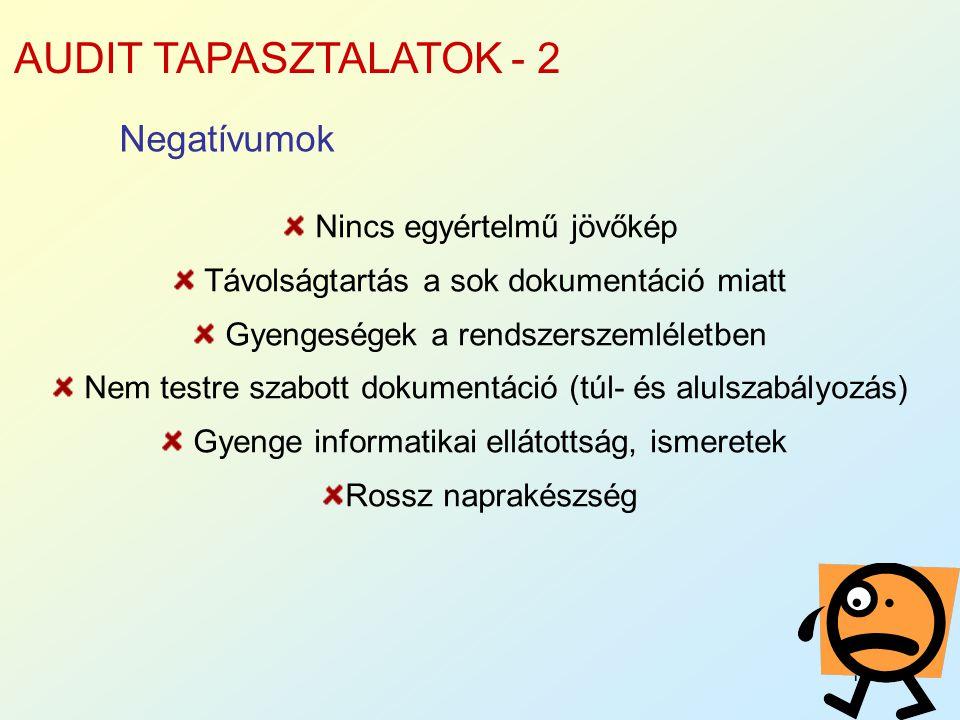 AUDIT TAPASZTALATOK - 2 Negatívumok Nincs egyértelmű jövőkép