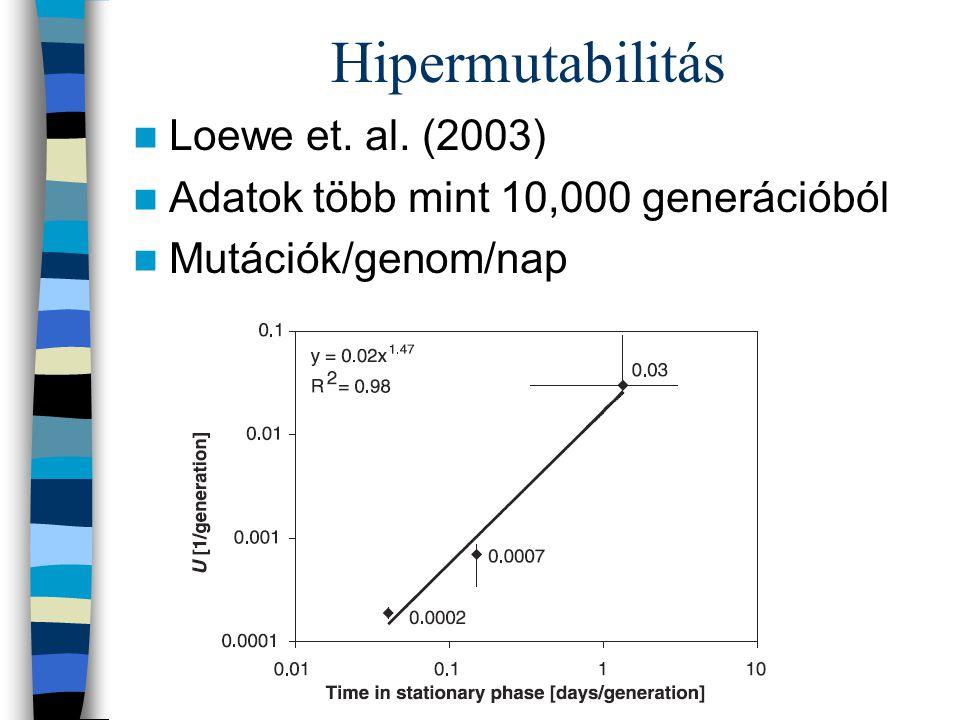 Hipermutabilitás Loewe et. al. (2003)