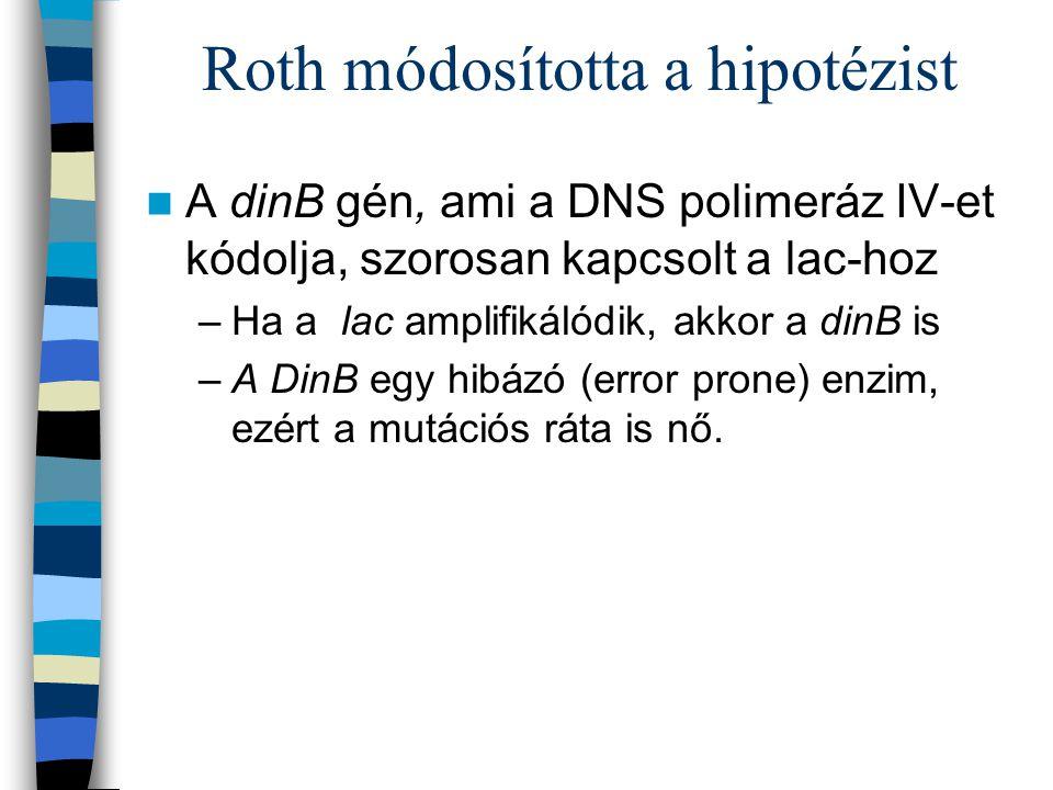 Roth módosította a hipotézist
