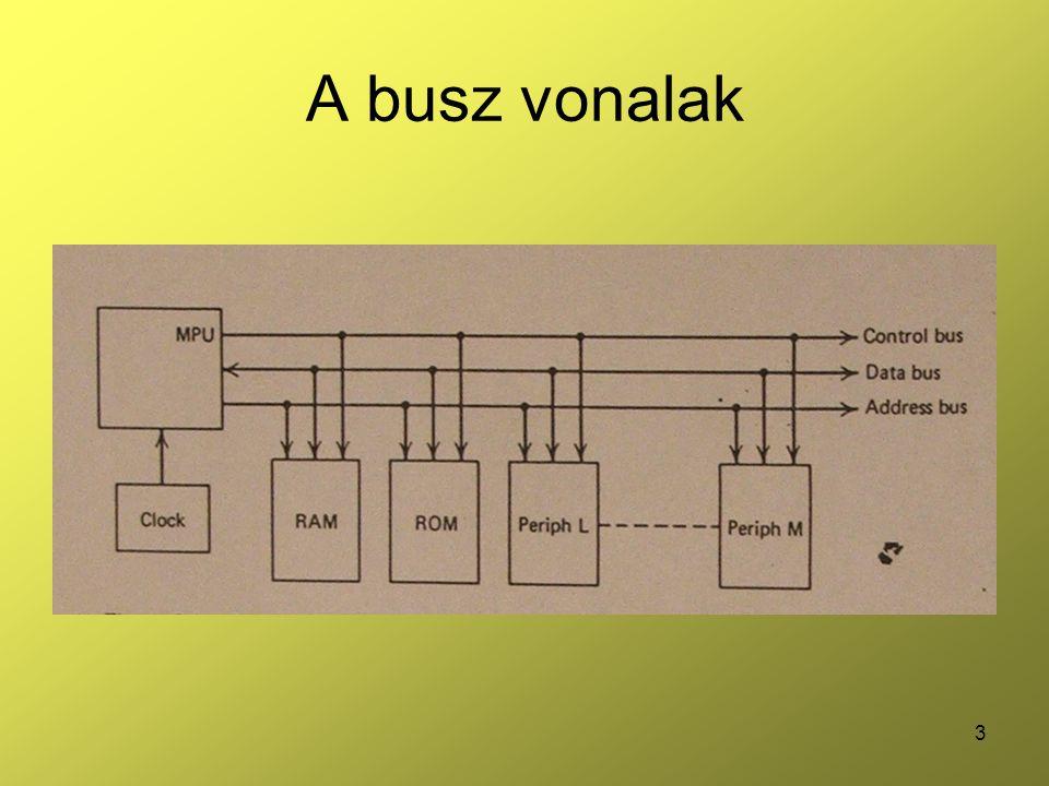 A busz vonalak