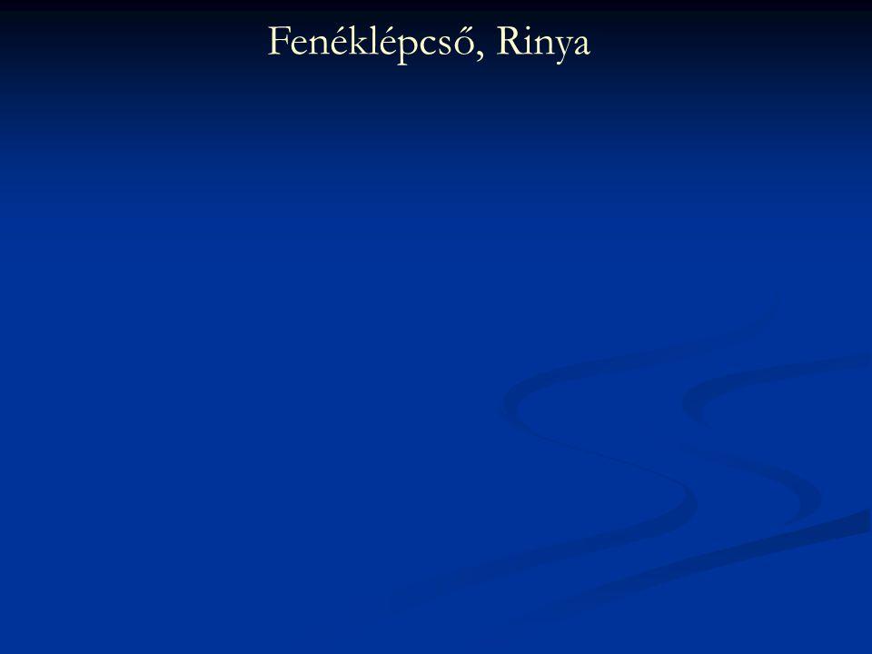 Fenéklépcső, Rinya