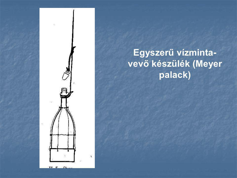 Egyszerű vízminta-vevő készülék (Meyer palack)