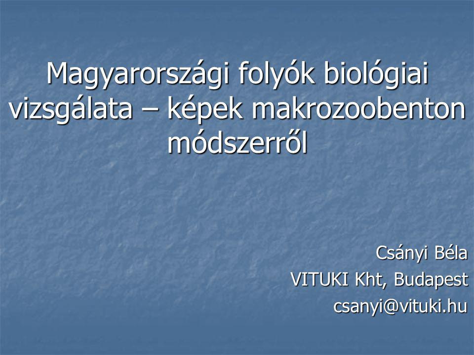Csányi Béla VITUKI Kht, Budapest csanyi@vituki.hu