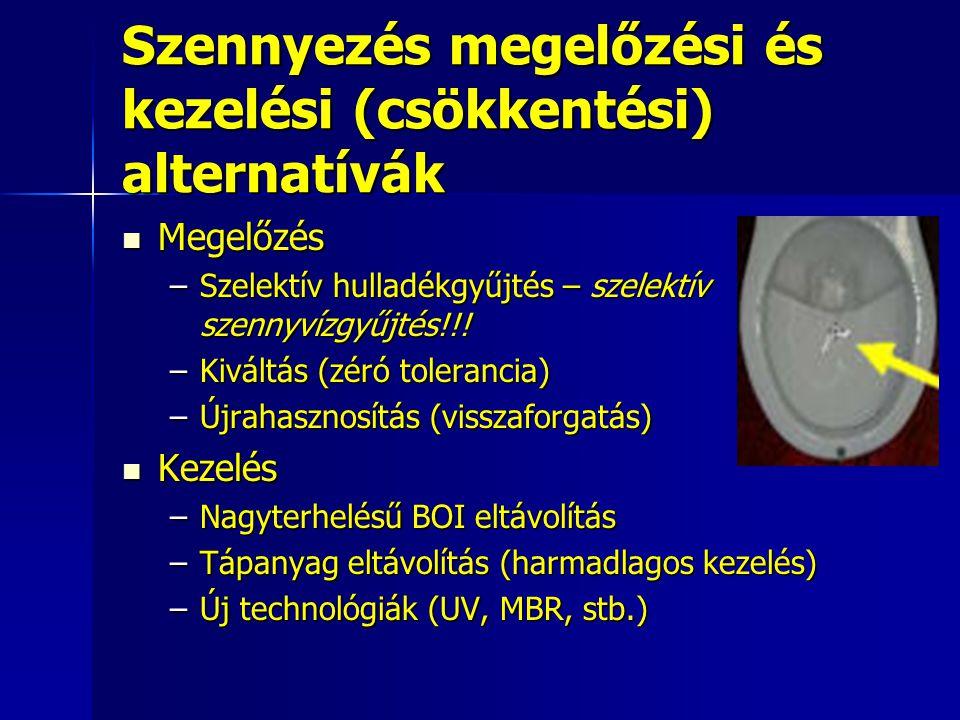 Szennyezés megelőzési és kezelési (csökkentési) alternatívák