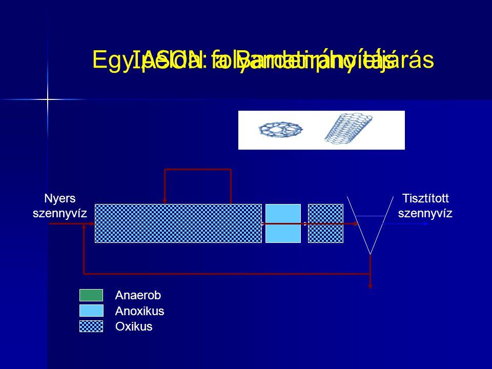 Egy példa: a Bardenpho eljárás IASON folyamatirányítás