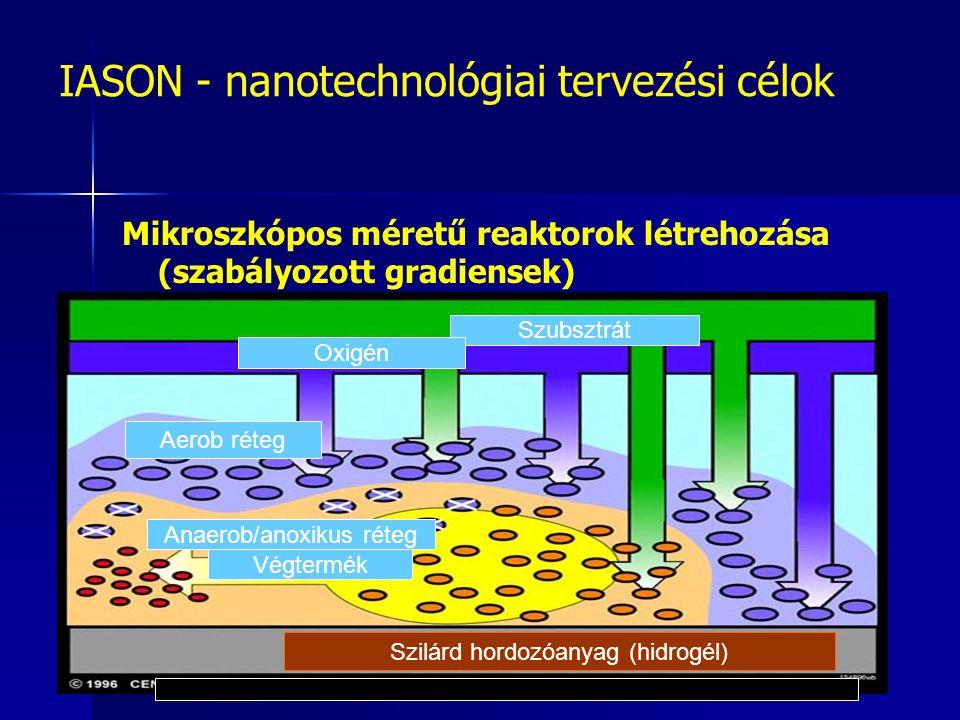 IASON - nanotechnológiai tervezési célok