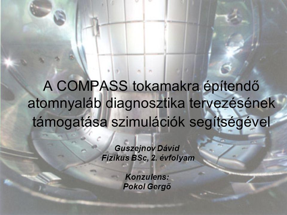 Guszejnov Dávid Fizikus BSc, 2. évfolyam Konzulens: Pokol Gergő