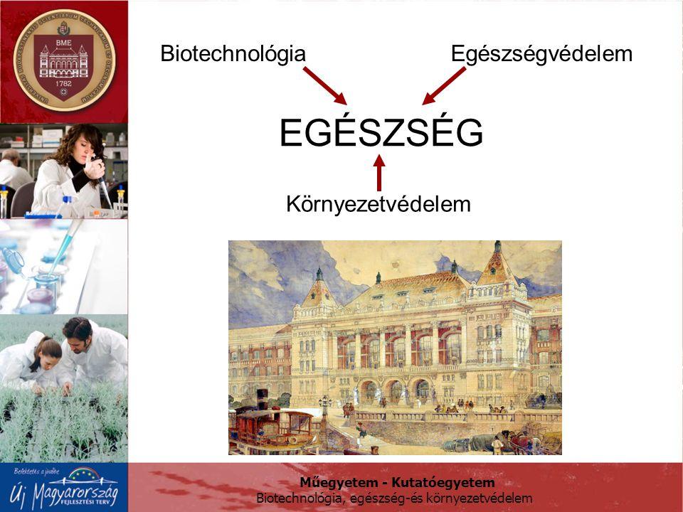 Biotechnológia Egészségvédelem EGÉSZSÉG Környezetvédelem