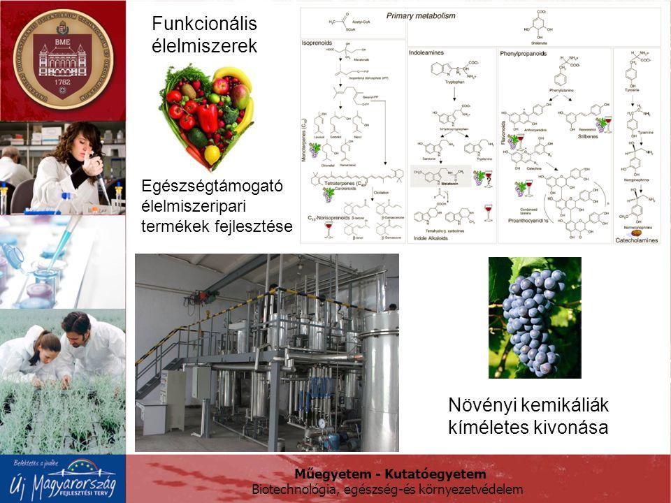 Funkcionális élelmiszerek