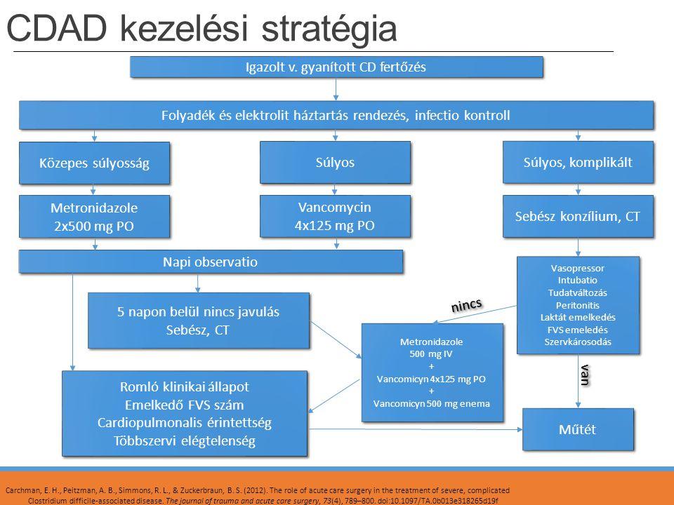 CDAD kezelési stratégia