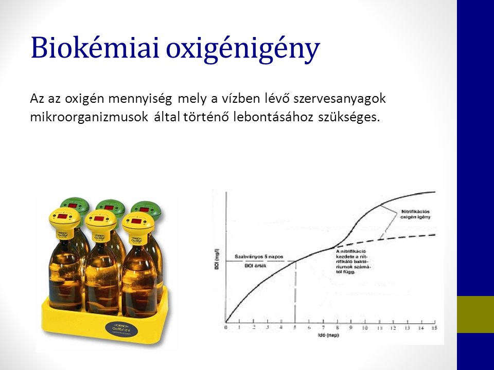 Biokémiai oxigénigény