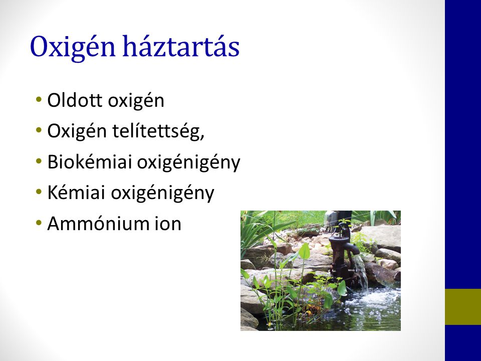 Oxigén háztartás Oldott oxigén Oxigén telítettség,