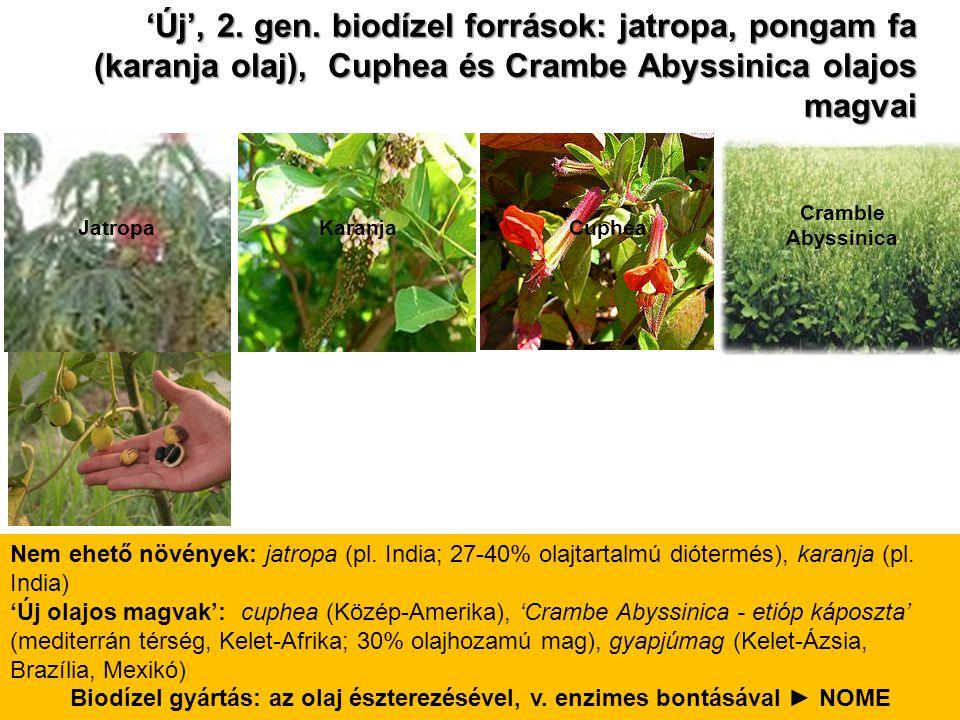 Biodízel gyártás: az olaj észterezésével, v. enzimes bontásával ► NOME