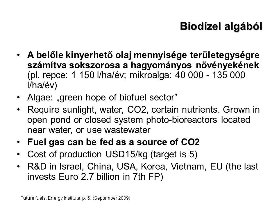 Biodízel algából