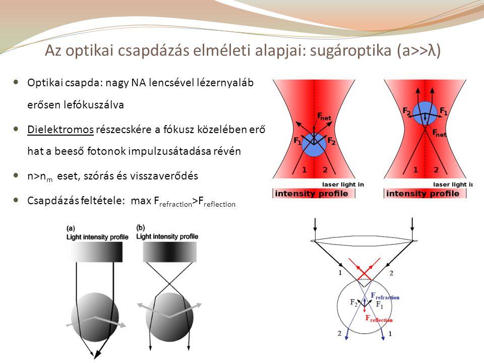 Az optikai csapdázás elméleti alapjai: sugároptika (a>>λ)