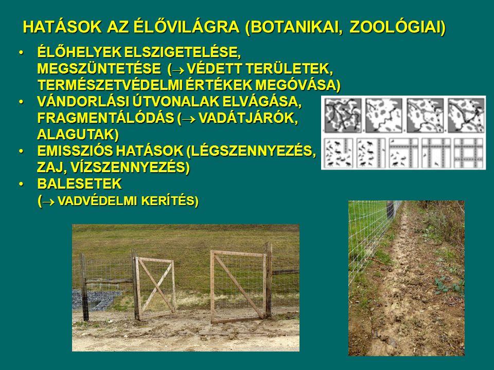 HATÁSOK AZ ÉLŐVILÁGRA (BOTANIKAI, ZOOLÓGIAI)