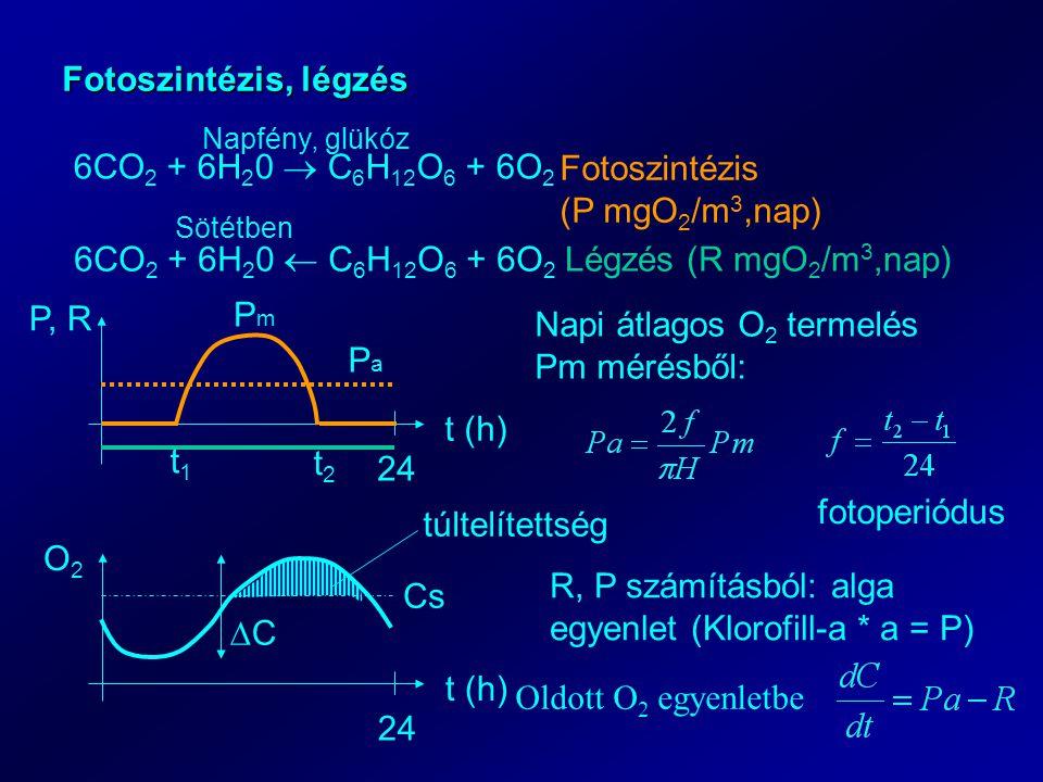 Napi átlagos O2 termelés Pm mérésből: Pa