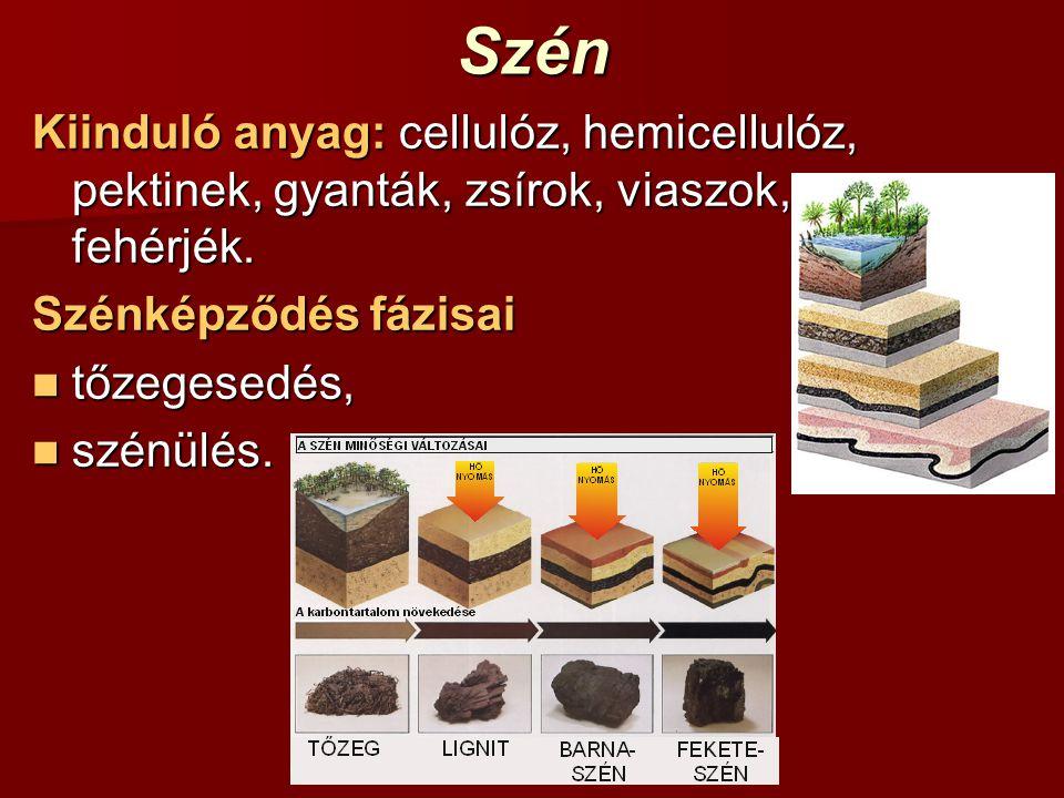 Szén Kiinduló anyag: cellulóz, hemicellulóz, pektinek, gyanták, zsírok, viaszok, fehérjék. Szénképződés fázisai.