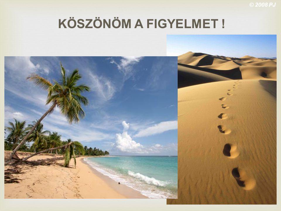© 2008 PJ KÖSZÖNÖM A FIGYELMET !