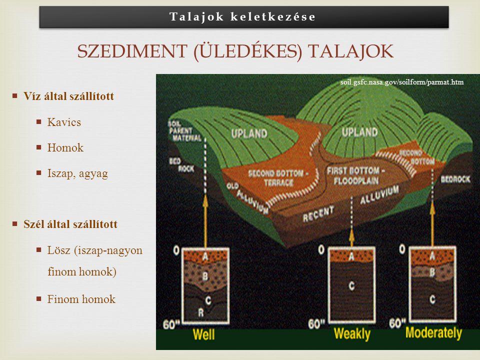 Szediment (Üledékes) talajok