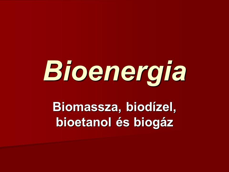 Biomassza, biodízel, bioetanol és biogáz