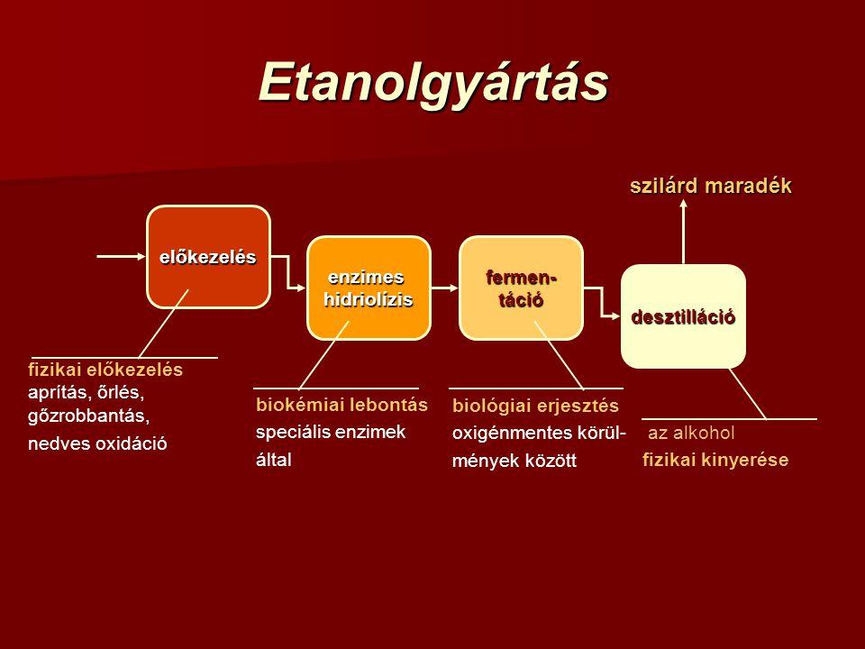 Etanolgyártás szilárd maradék előkezelés enzimes hidriolízis