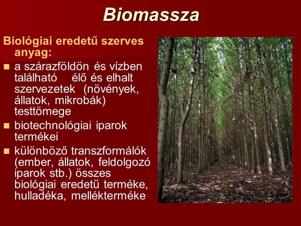 Biomassza Biológiai eredetű szerves anyag: