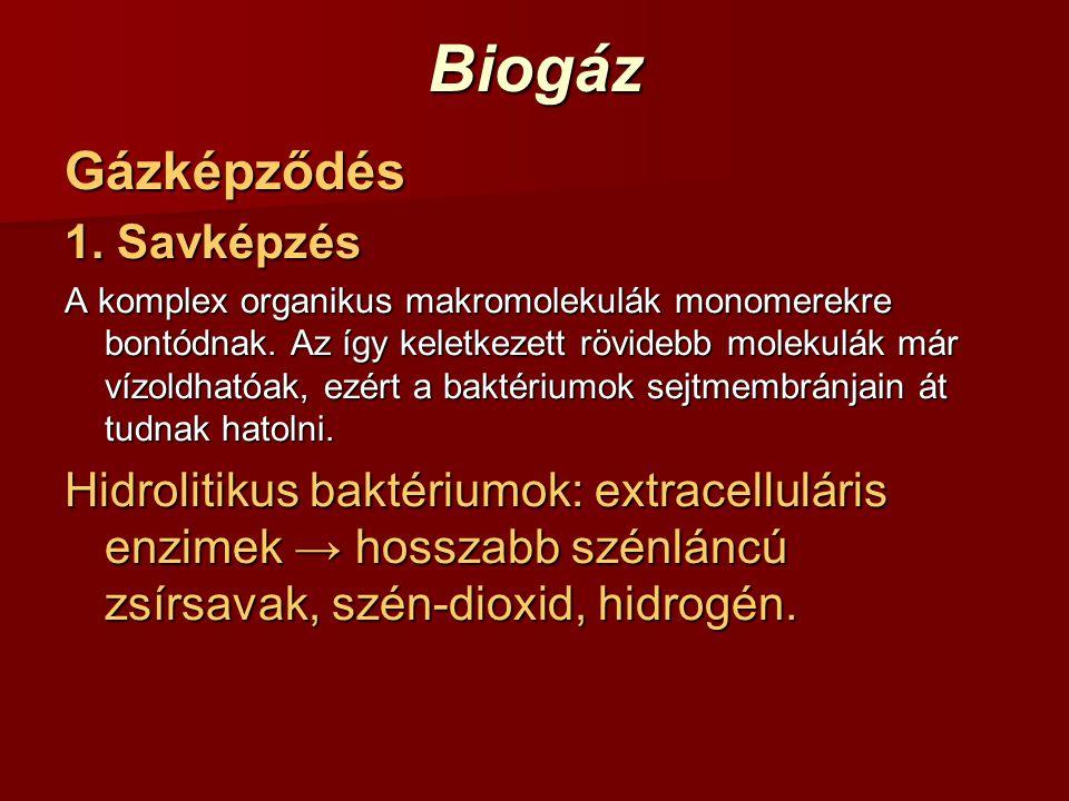 Biogáz Gázképződés 1. Savképzés