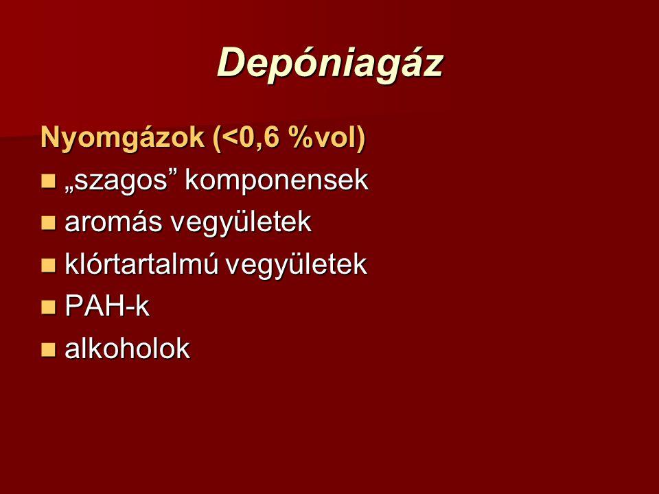 """Depóniagáz Nyomgázok (<0,6 %vol) """"szagos komponensek"""