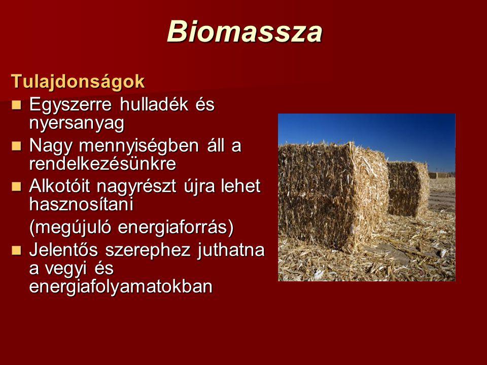Biomassza Tulajdonságok Egyszerre hulladék és nyersanyag