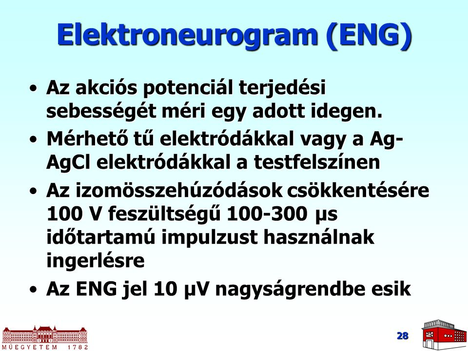 Elektroneurogram (ENG)
