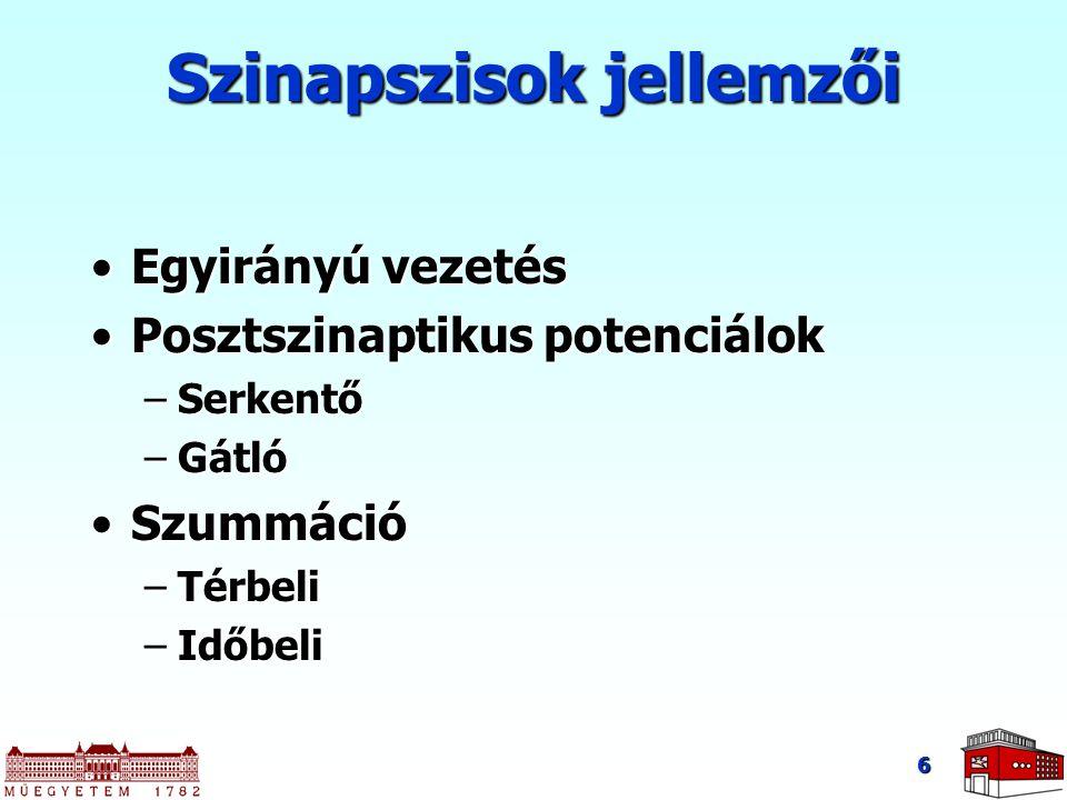 Szinapszisok jellemzői