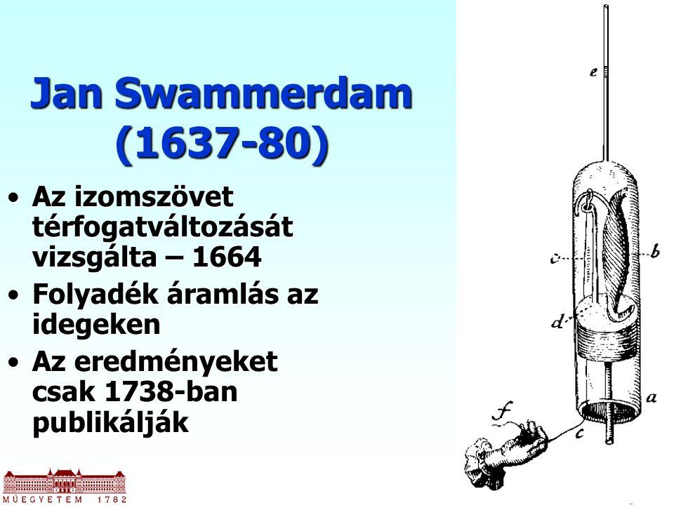 Jan Swammerdam (1637-80) Az izomszövet térfogatváltozását vizsgálta – 1664. Folyadék áramlás az idegeken.