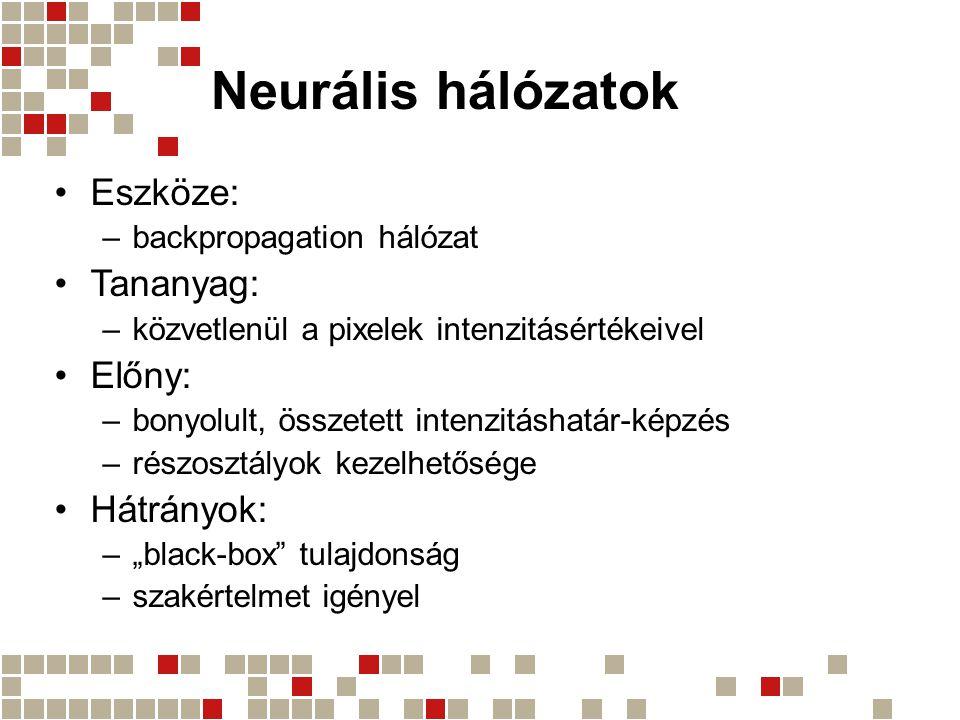 Neurális hálózatok Eszköze: Tananyag: Előny: Hátrányok: