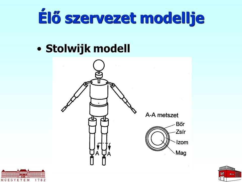 Élő szervezet modellje