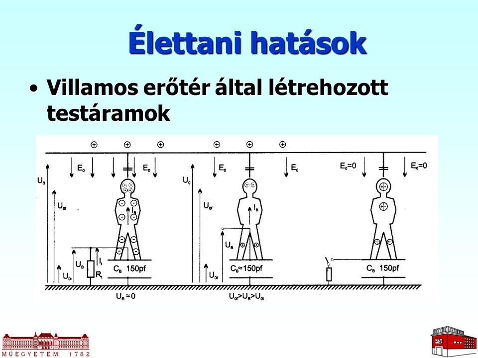 Élettani hatások Villamos erőtér által létrehozott testáramok