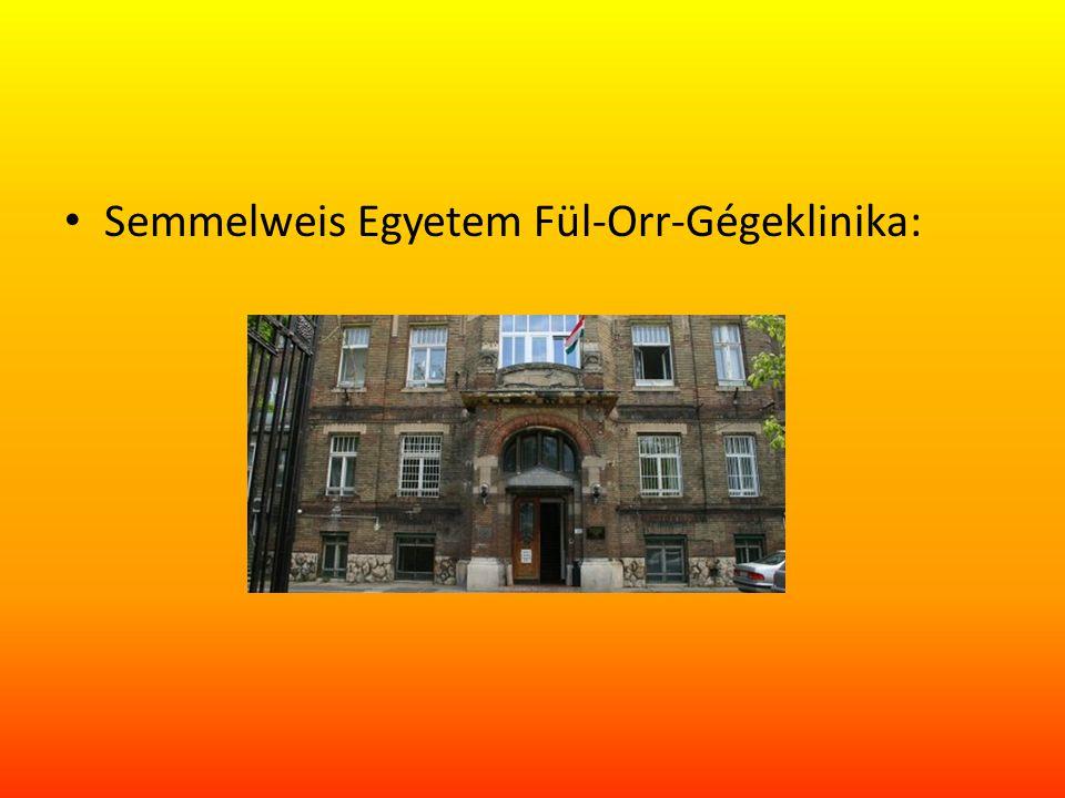 Semmelweis Egyetem Fül-Orr-Gégeklinika: