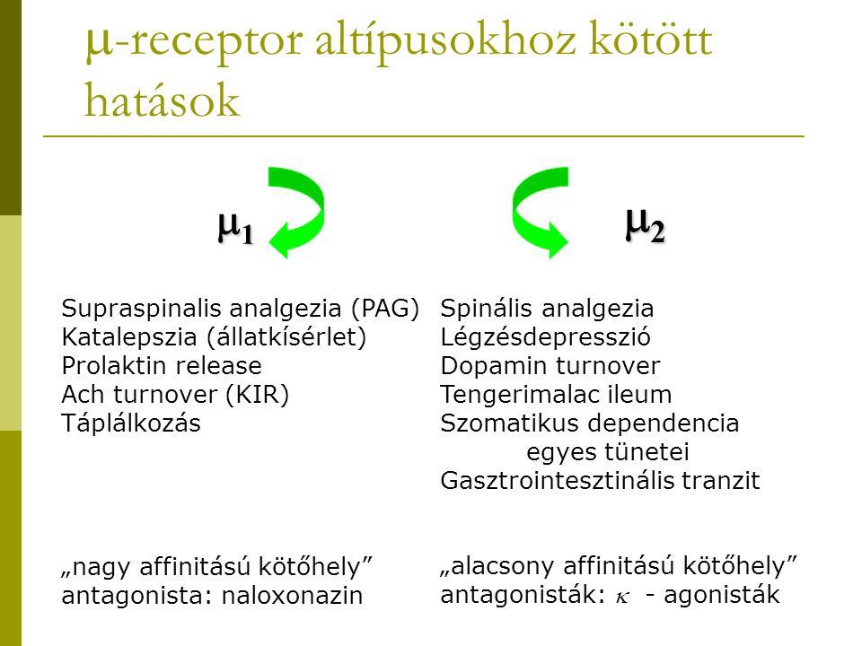 -receptor altípusokhoz kötött hatások