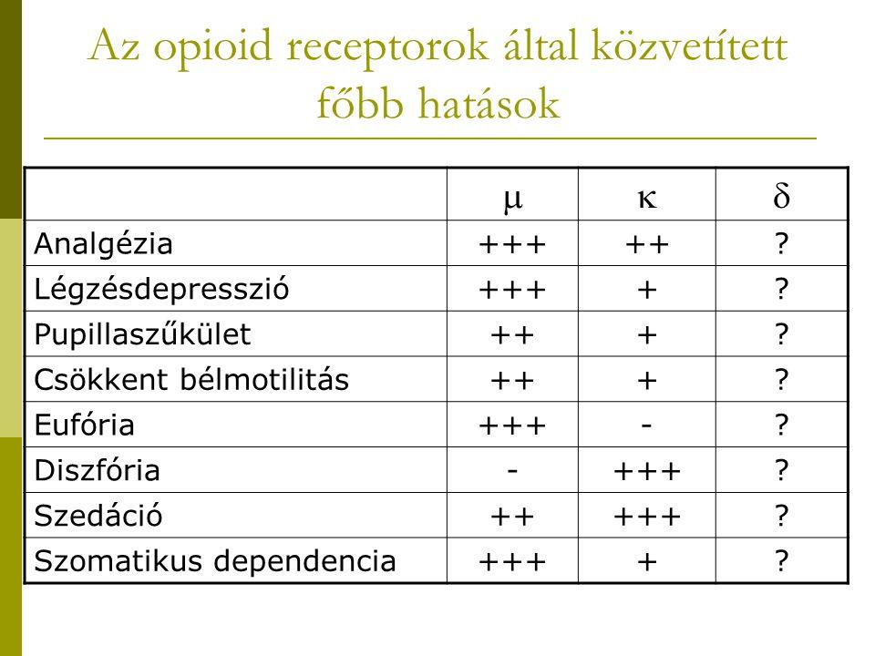 Az opioid receptorok által közvetített főbb hatások