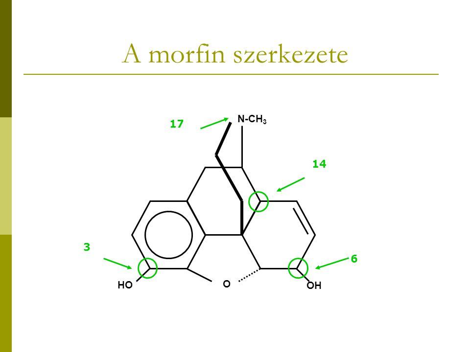 A morfin szerkezete N-CH3 17 14 3 6 HO O OH